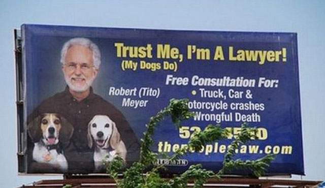 Lawyer who has his dogs trust